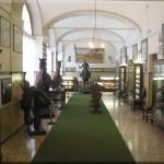 Galleria cavallo d'arme e sportivo copia